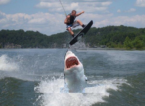 [Image: jump_over_shark.jpg]